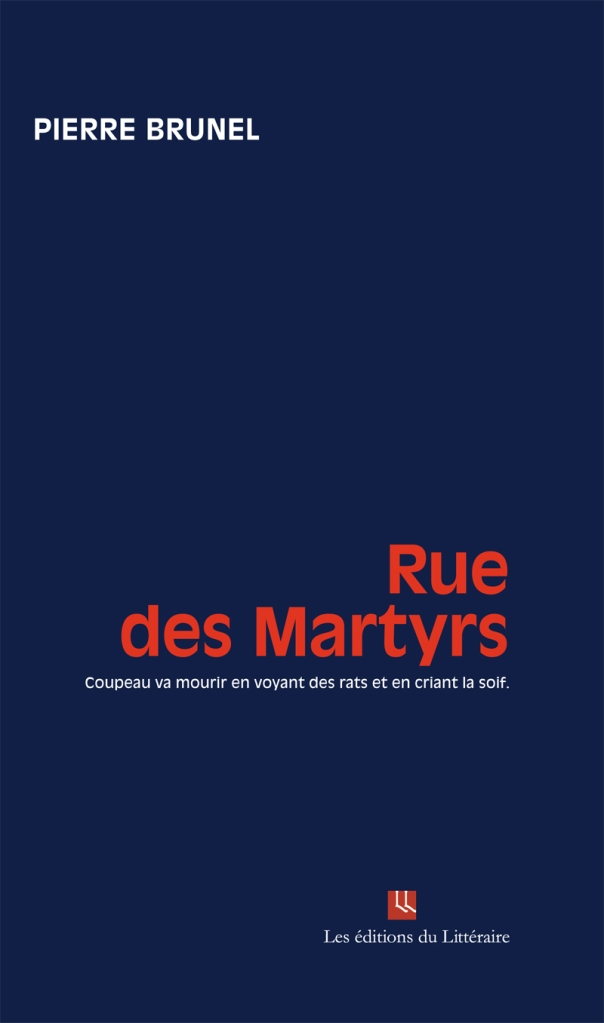 http://leseditionsdulitteraire.files.wordpress.com/2012/11/ruedesmartyrs.jpg?w=604